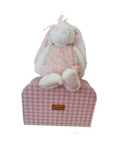 Bunny Soft Toy in a suitcase